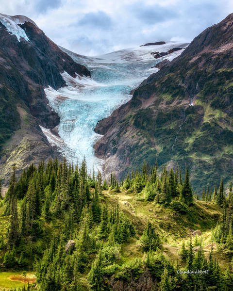 Photograph - Glacier And Alpine Meadow by Claudia Abbott