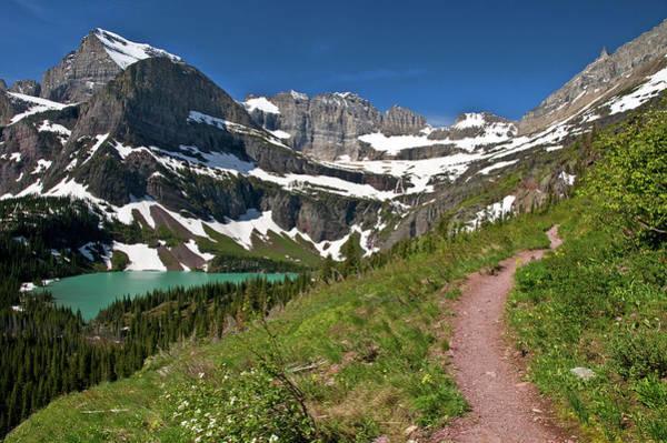 Photograph - Glacier Backcountry Trail by Gary Lengyel