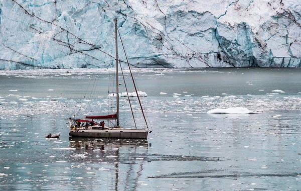 Photograph - Glacier Sailing by Ed Clark