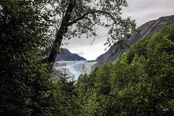 Wall Art - Photograph - Blue Glacier Through The Trees - Alaska by Madeline Ellis