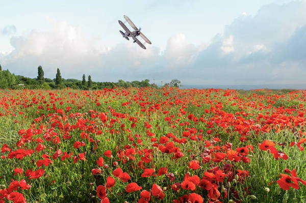 Photograph - Gladiator Over Poppy Field by Gary Eason