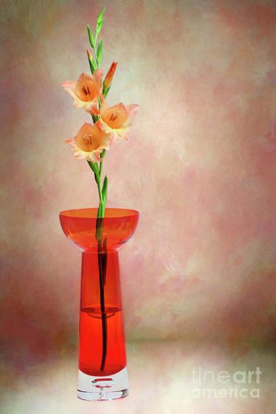 Wall Art - Photograph - Gladioli Still Life I By Kaye Menner by Kaye Menner