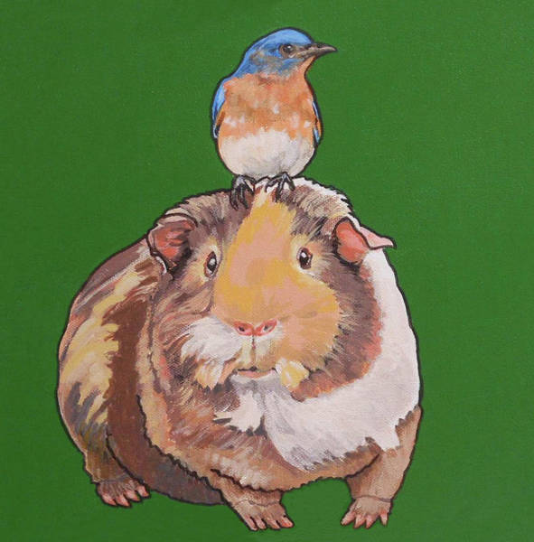 Painting - Gladys The Guinea Pig by Sharon Cromwell