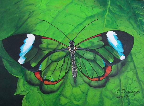 Painting - Glass Wing Butterfly by Sharon Duguay