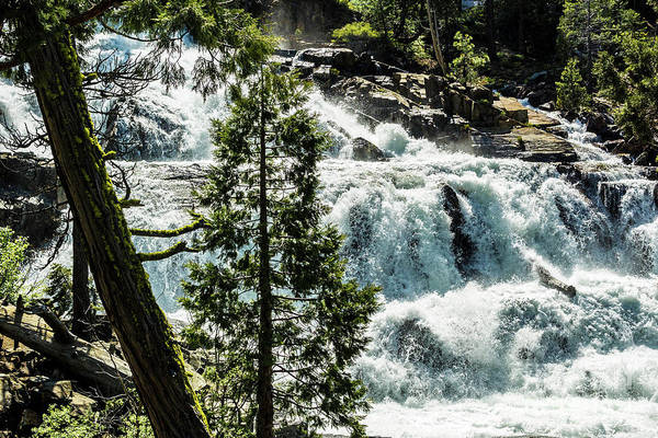 Photograph - Glen Alpine Falls 1 by Joe Lach