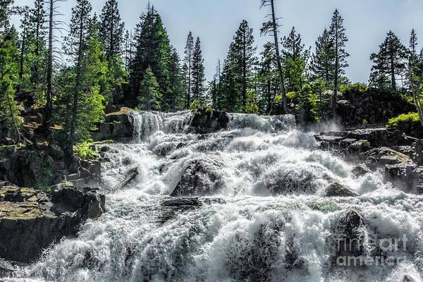 Photograph - Glen Alpine Falls 7 by Joe Lach