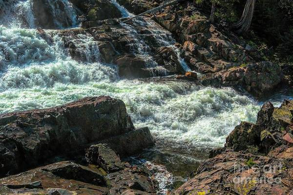 Photograph - Glen Alpine Falls 9 by Joe Lach