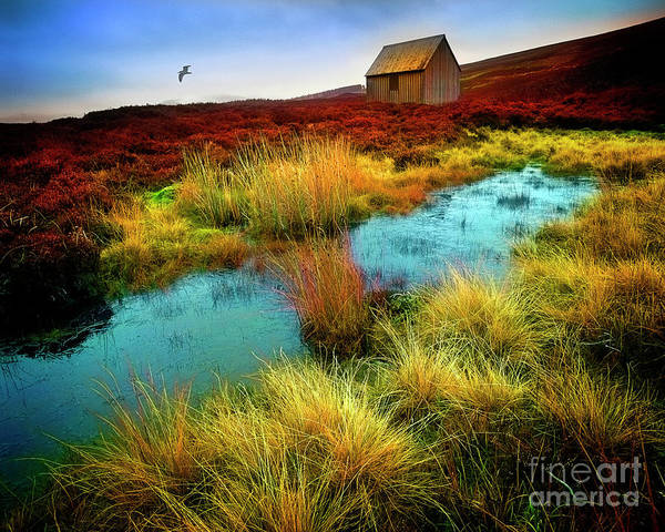 Photograph - Glen Cochill by Edmund Nagele