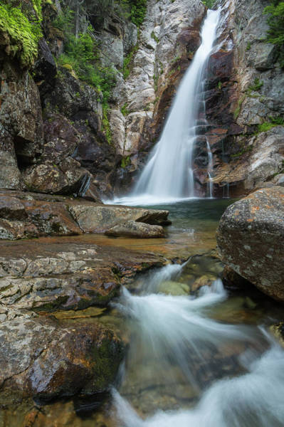 Photograph - Glen Ellis Falls  by Colin Chase