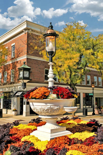 Trough Wall Art - Painting - Glen Ellyn Watering Trough by Christopher Arndt