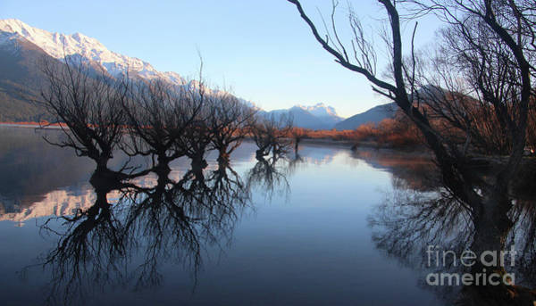 Wall Art - Photograph - Glenorchy Reflections by Anthony Forster