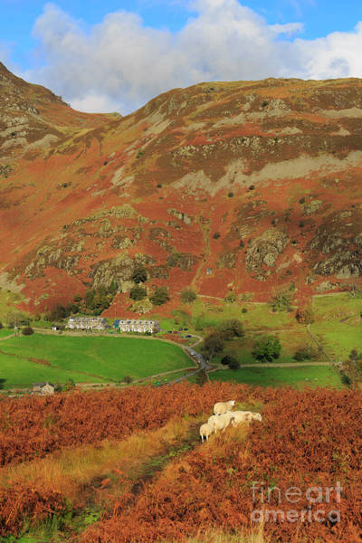 Glenridding Wall Art - Photograph - Glenridding And The Rake From Above Glenridding Beck by Louise Heusinkveld