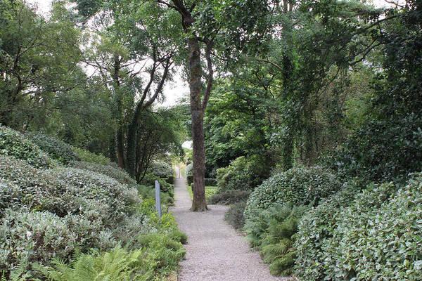 Photograph - Glenveagh Castle Gardens 4305 by John Moyer