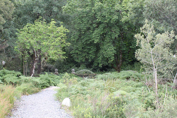 Photograph - Glenveagh Castle Gardens 4309 by John Moyer