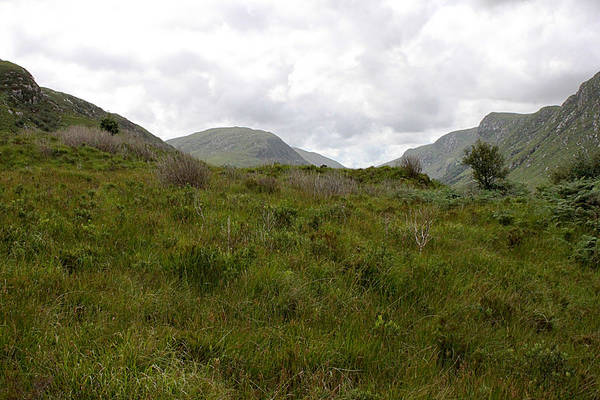 Photograph - Glenveagh National Park 4308 by John Moyer