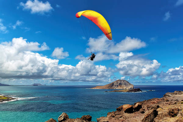 Photograph - Gliding Over Makapuu by Susan Rissi Tregoning