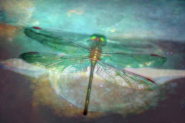 Fairy Pools Photograph - Glistening by Debra and Dave Vanderlaan