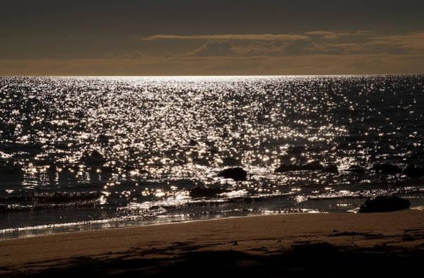 Photograph - Glistening On The Water by Pamela Walton
