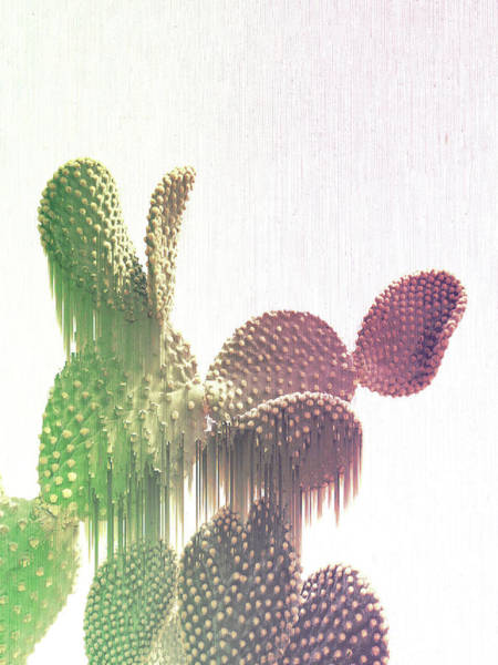Mixed Media - Glitch Cactus by Emanuela Carratoni