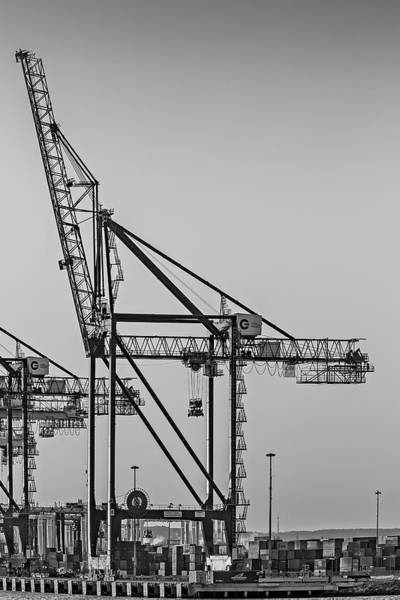 Photograph - Global Containers Terminal Cargo Freight Cranes Bw by Susan Candelario