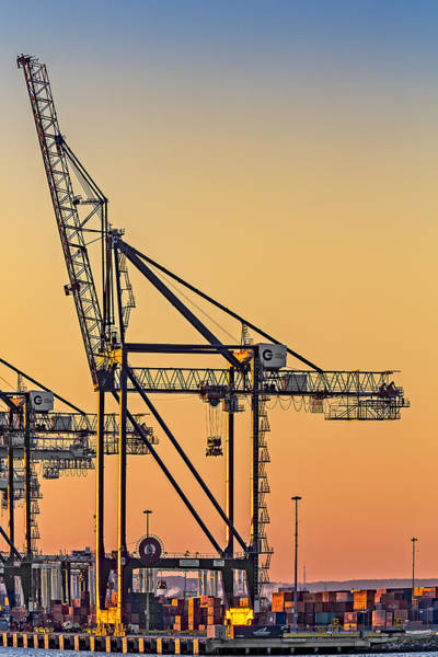 Photograph - Global Containers Terminal Cargo Freight Cranes by Susan Candelario
