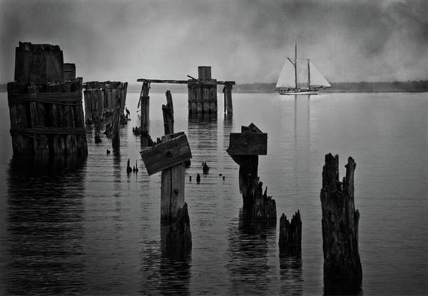 Wall Art - Photograph - The Glimmer In The Gathering Gloom by Chris Fleming