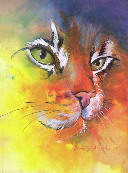 Painting - Glow Cat by Sherry Shipley