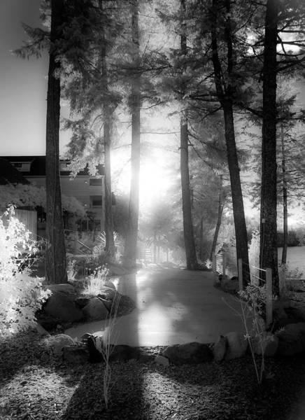 Photograph - Glow by Lee Santa