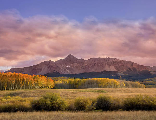 Wall Art - Photograph - Glowing Aspens Below Wilson Peak by Bridget Calip