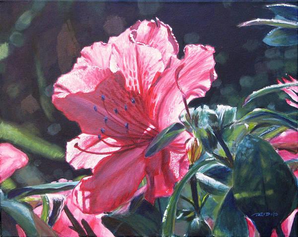 Painting - Glowing Azalea by Christopher Reid