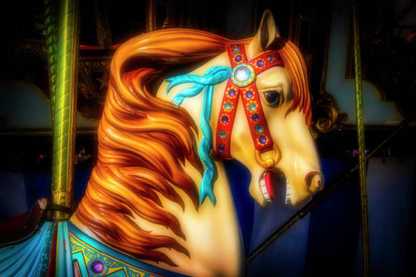Photograph - Glowing Carrousel Horse by Garry Gay