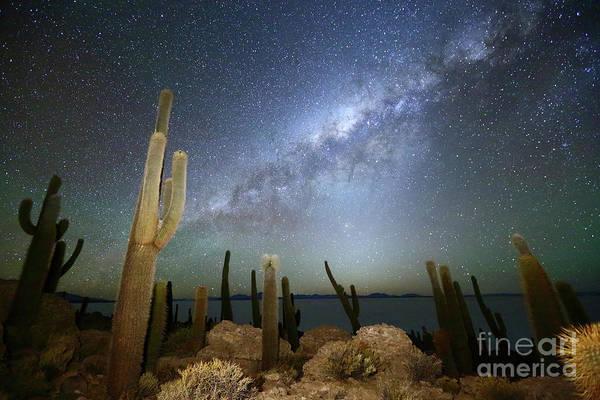 Wall Art - Photograph - Glowing Heavens Above Cacti On Incahuasi Island Bolivia by James Brunker
