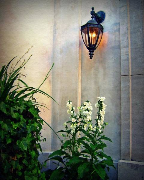 Photograph - Glowing Lantern And Flowers by Patricia Strand