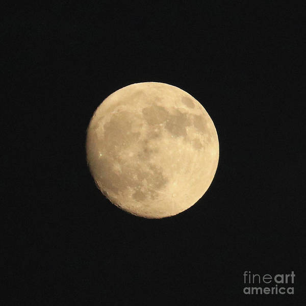 Photograph - Glowing Moon by Carol Groenen