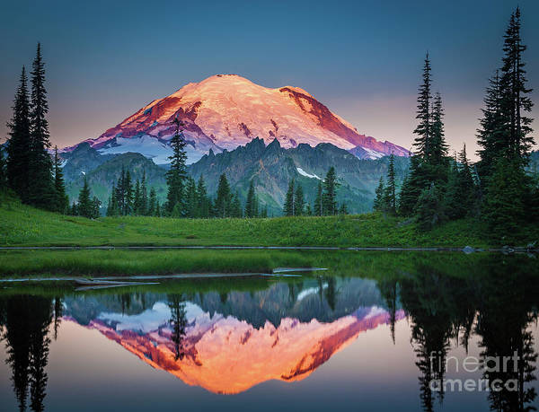 Mount Rainier Photograph - Glowing Peak - August by Inge Johnsson