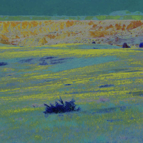 Photograph - Glowing Prairie Reverie by Cris Fulton