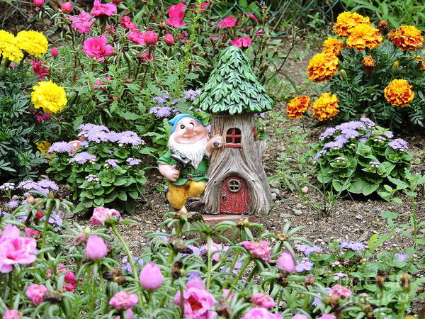 Wall Art - Photograph - Gnome At Home by Michael Wayne Gulliver