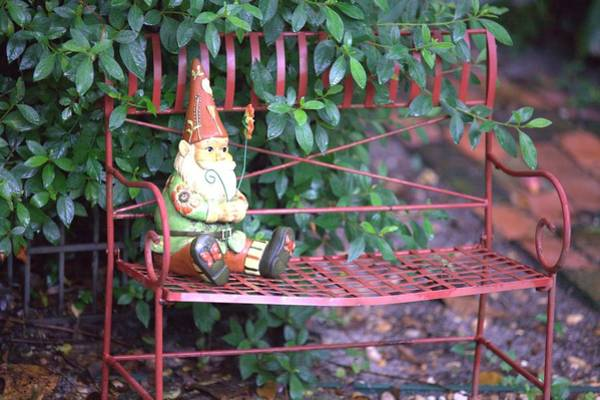 Photograph - Gnome On A Bench by Gordon Elwell