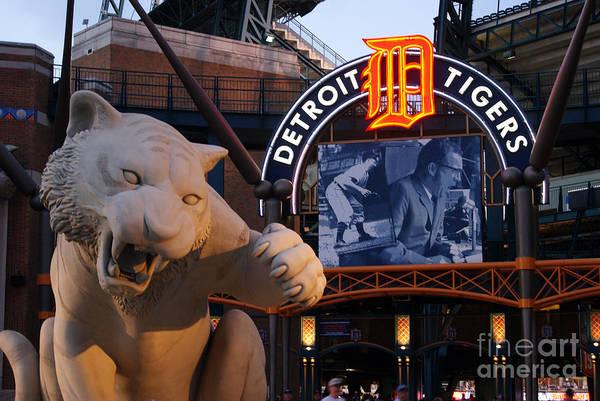 Detroit Photograph - Go Get Um Tiger by Dawn Williams