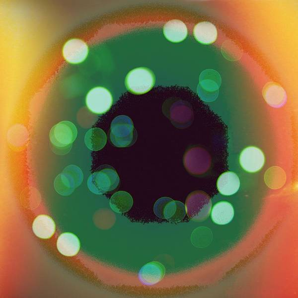 Photograph - Go Green, Go Orange, Go Polka Dots by Itsonlythemoon