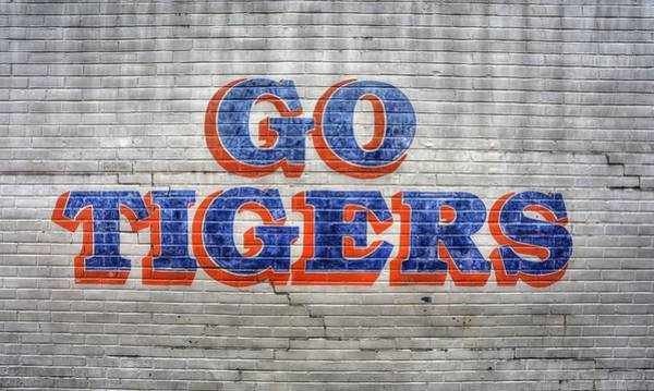 War Eagle Photograph - Go Tigers by JC Findley