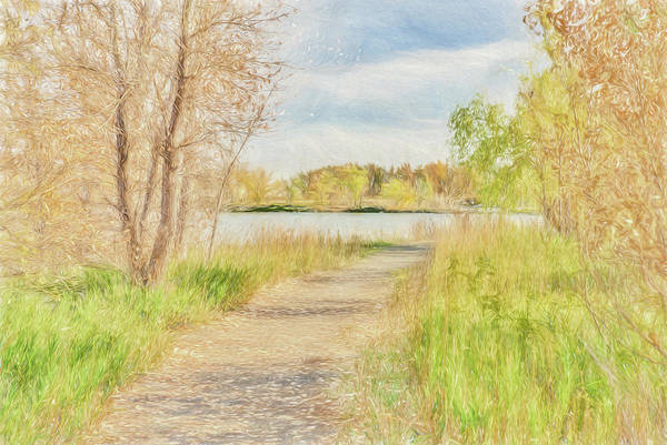 Photograph - Go Where The Path Leads You by Jennifer Grossnickle
