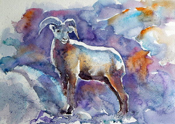 Wild Life Painting - Goat by Kovacs Anna Brigitta