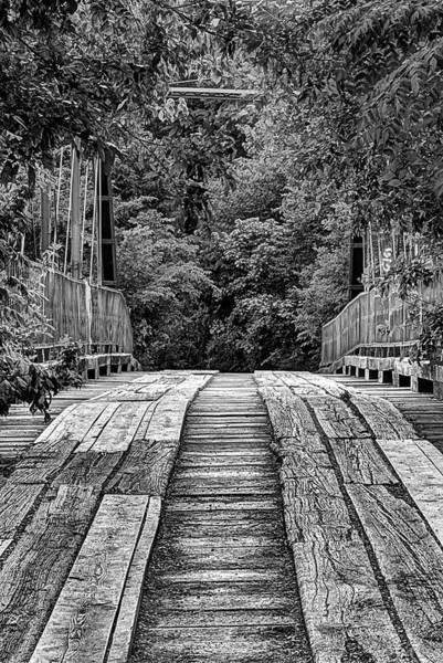 Photograph - Goat Man Bridge Denton Texas by JC Findley
