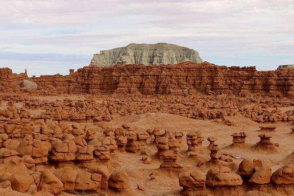 Photograph - Goblin Valley State Park - 4 by Christy Pooschke