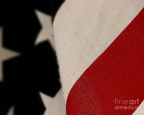 Photograph - God Bless The U. S. A. by Donna Cavanaugh