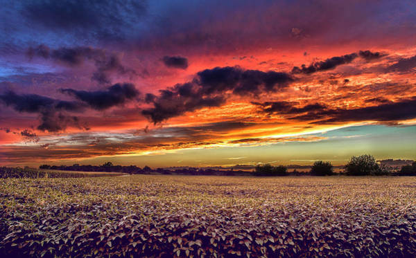 Wall Art - Photograph - God's Painting by Tru Vision Photography