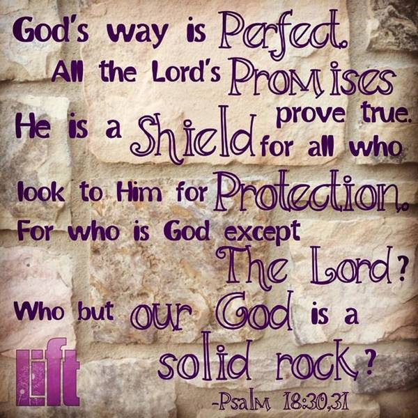 Design Photograph - God's Way Is Perfect. All The by LIFT Women's Ministry designs --by Julie Hurttgam
