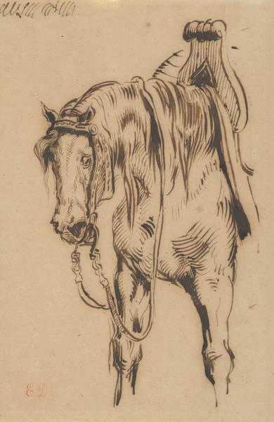 Drawing - Goetz Van Berlichingen's Horse by Eugene Delacroix