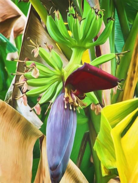 Banana Leaf Mixed Media - Going Bananas  by Richard Rizzo
